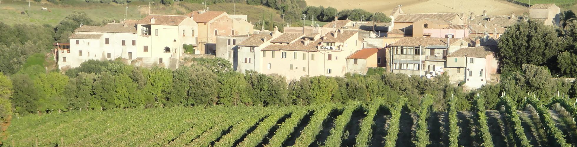 Cantina dei vini La Valle di Ceri